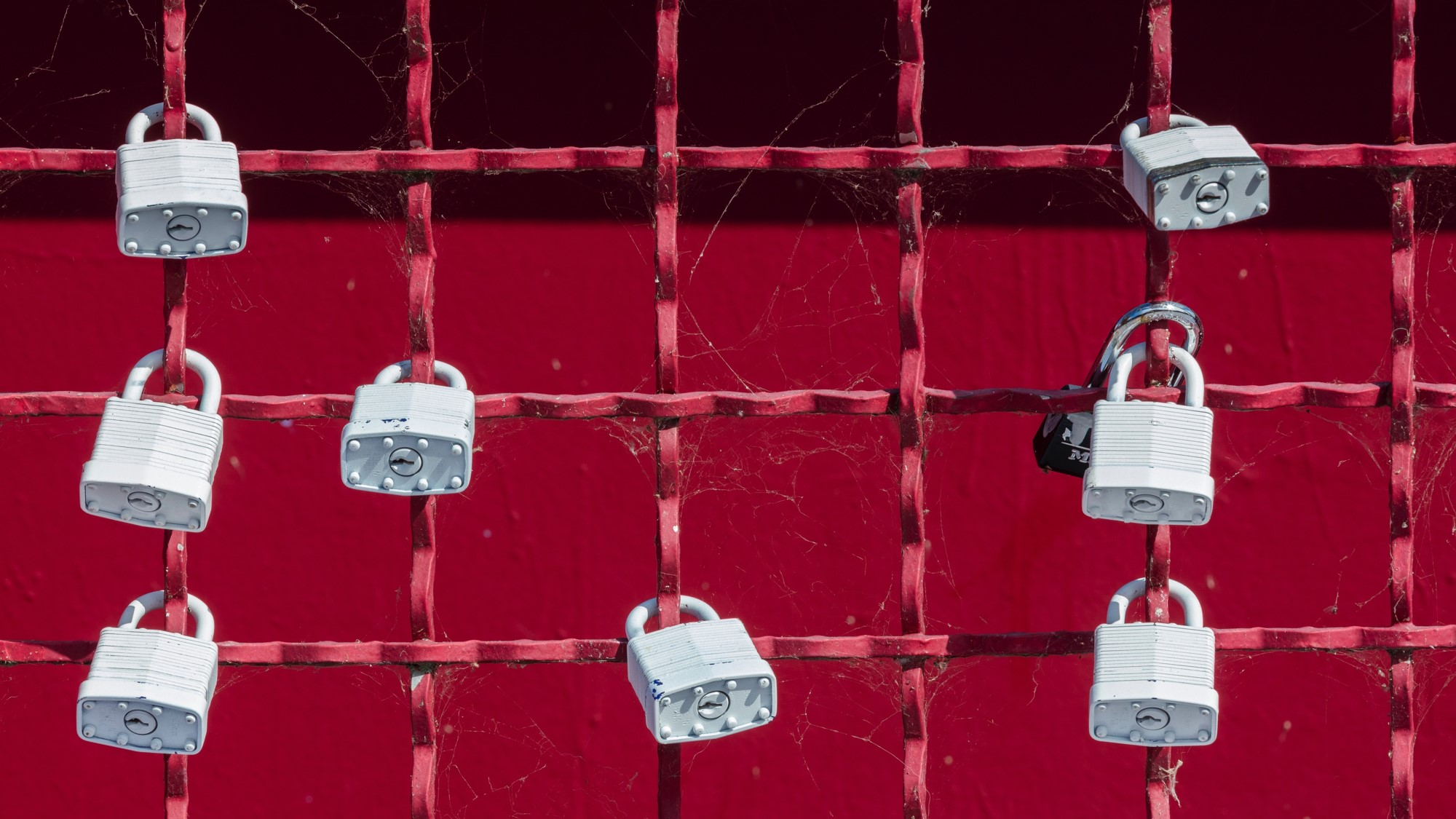 the-new-frontier-of-cybersecurity-and-the-start-ups-making-an-impact